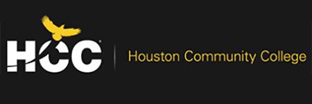 HCC 2 SEO411 Houston SEO Expert, Web Design, Social Media, Digital Marketing & Website Penalty Recovery